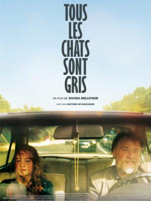 Affiche du film Tous les chats sont gris